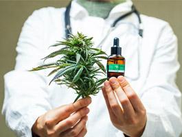 Medicinal-vs-Illicit-Cannabis